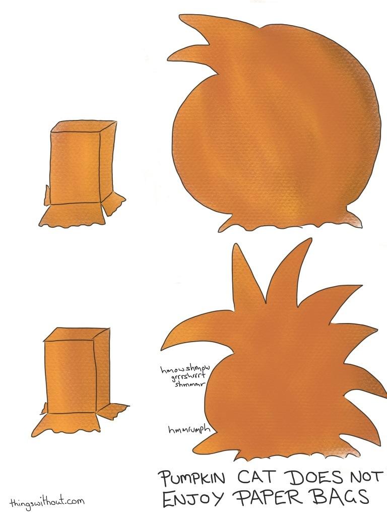 160: Pumpkin Bag